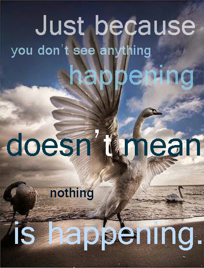 Just because you don't see anything happening, doesn't mean nothing is happening.